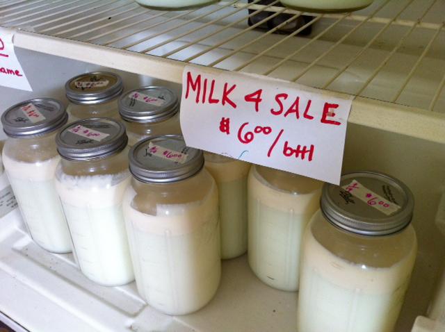 Raw milk shelf in refrigerator.