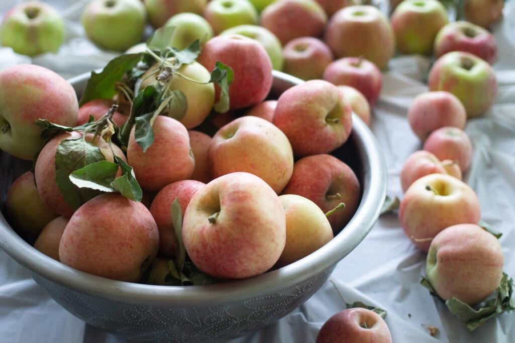Apples for apple cider.
